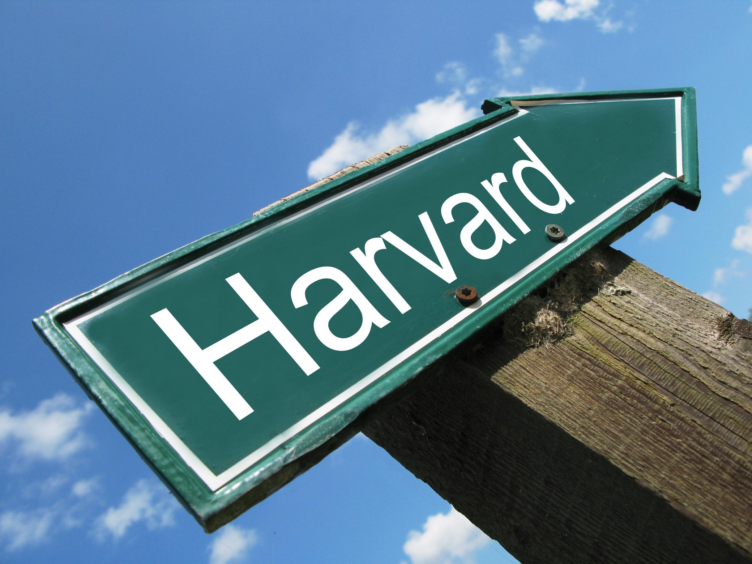 Как я училась в Гарварде —  прямой эфир @zaza_school