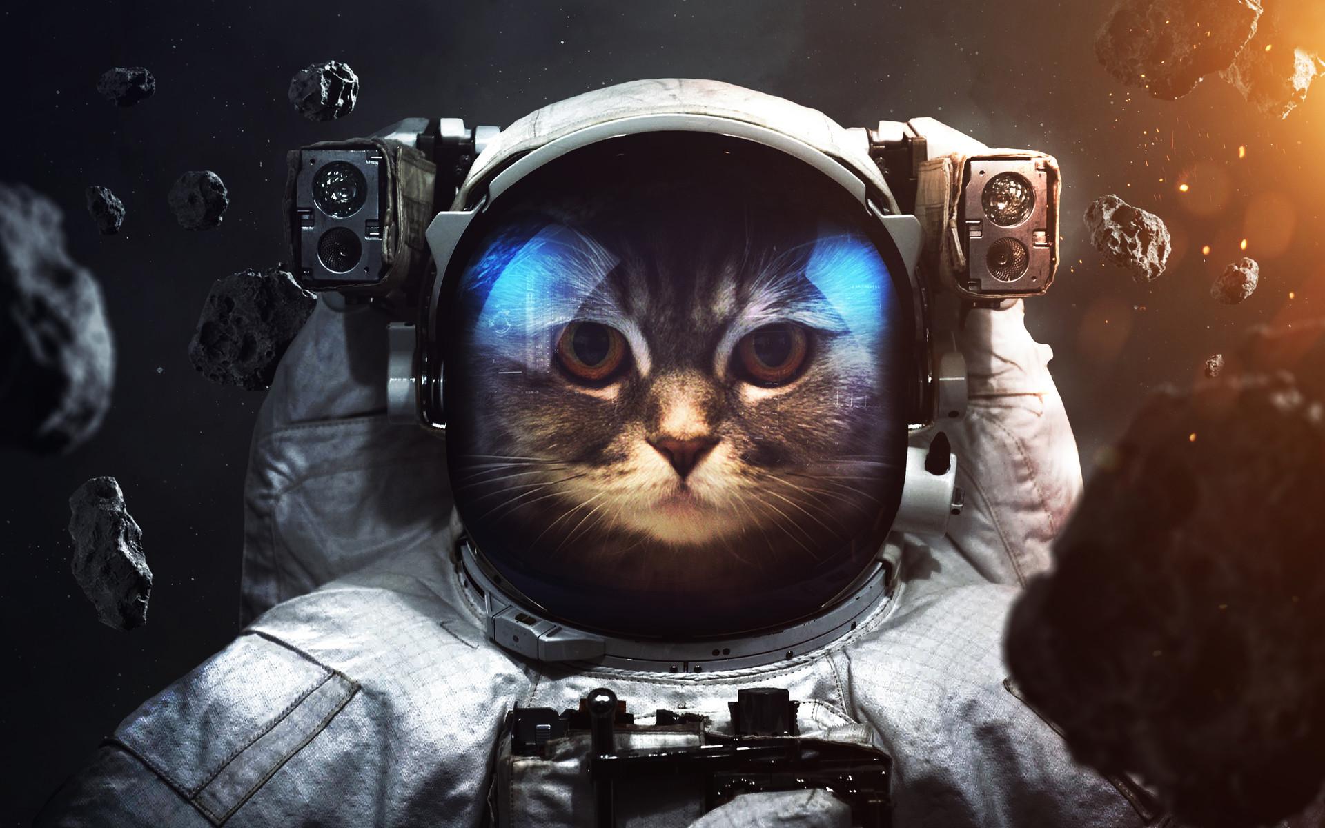 Космический тест Exploring Space