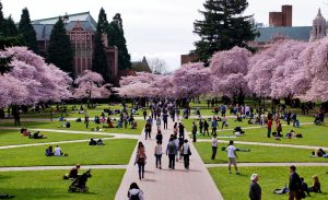 iD Tech Camp, University of Washington – Seattle